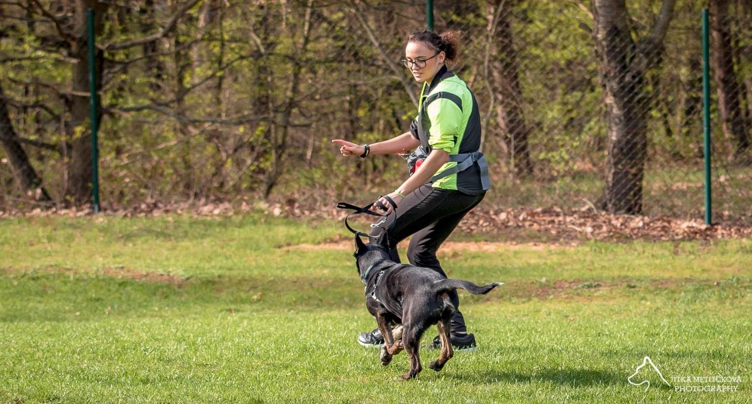 """fb9244cd67a276 Nie da się wytrenować psa bez wzajemnej komunikacji"""": wywiad z ..."""