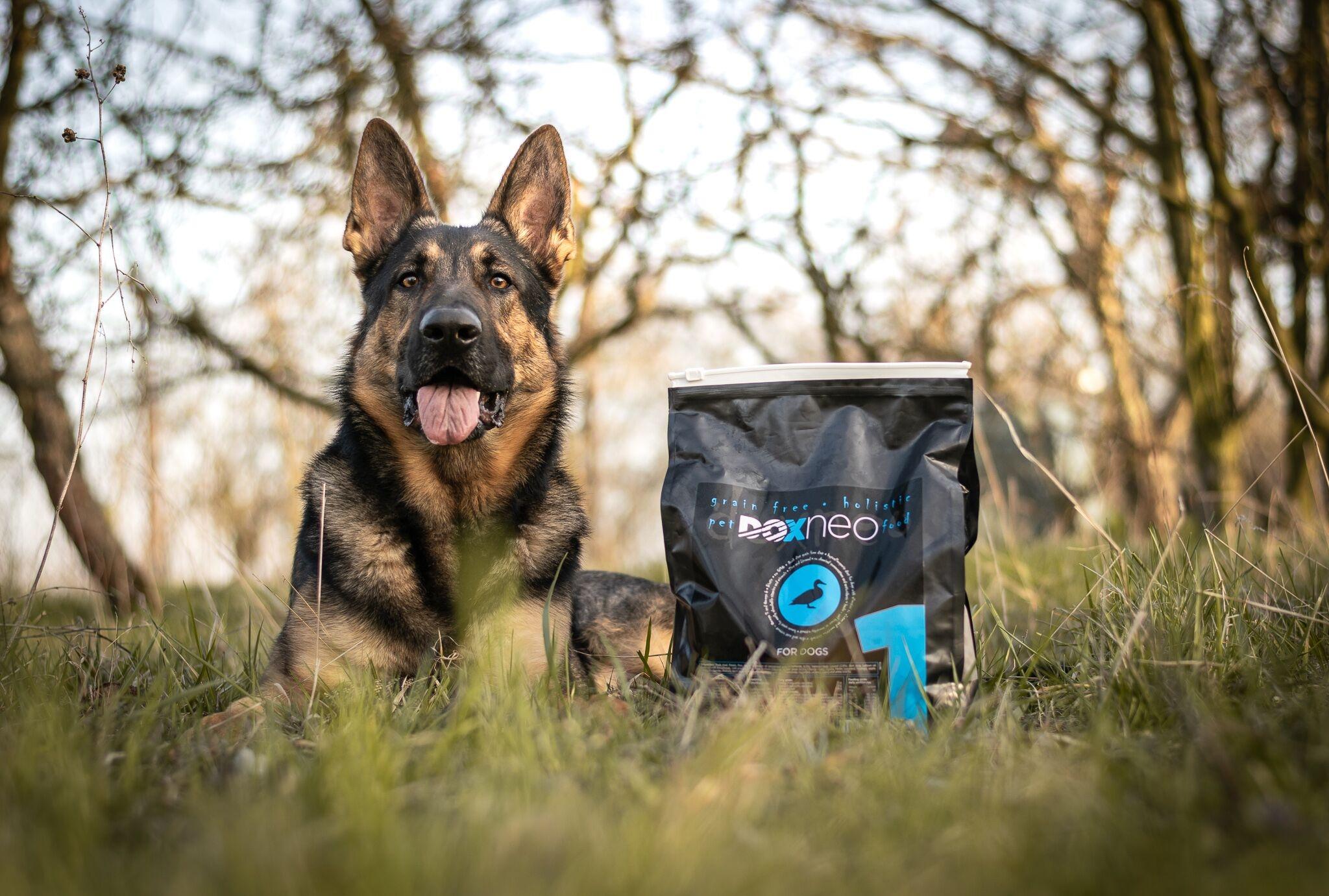 Krmivo pro psy Doxneo