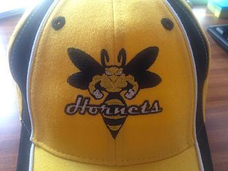 Výšivka Hornets