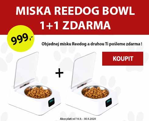 Miska 1+1