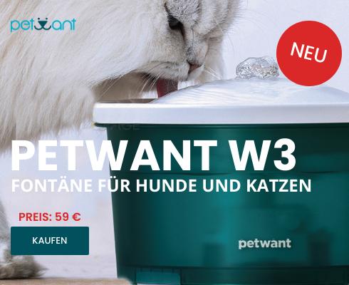 Petwant W3