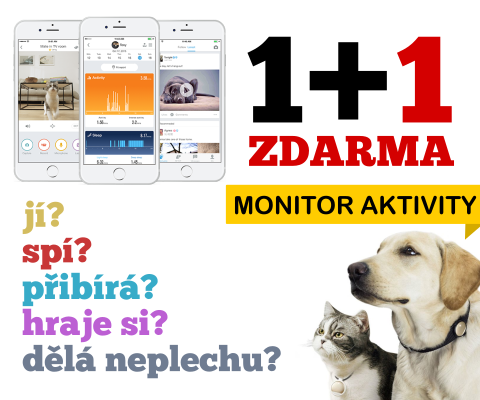Petkit Monitor Aktivity