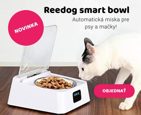 Smart bowl miska