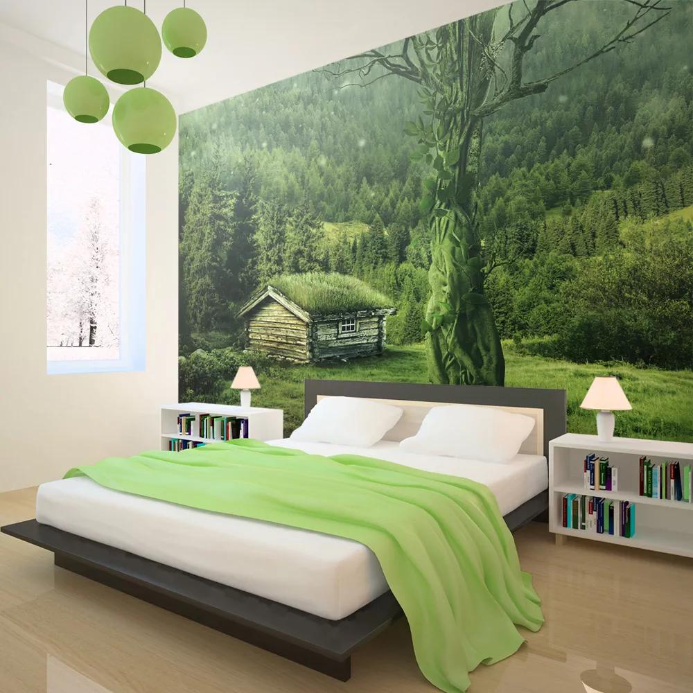 Zelená tapeta prírody dovido