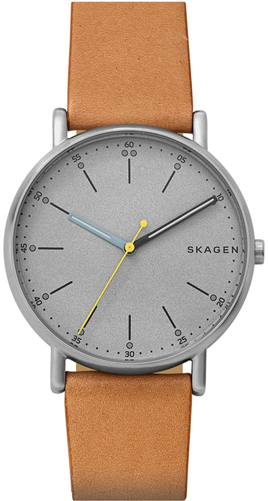 Skagen Signature Big Grey SKW6373