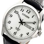 Citizen Dress