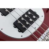 MusicMan Stingray 4 Special HH - Dropped Copper color - White pickguard - Roasted javorový krk
