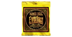 2560 Ernie Ball Everlast 80/20 Bronze - 10 / 50