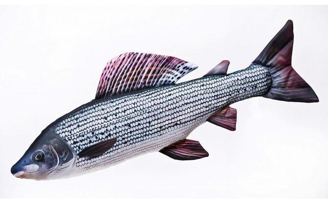 Gaby Polštář Lipan 65cm - Gaby polštář plyšová ryba Lipan podhorní 49cm