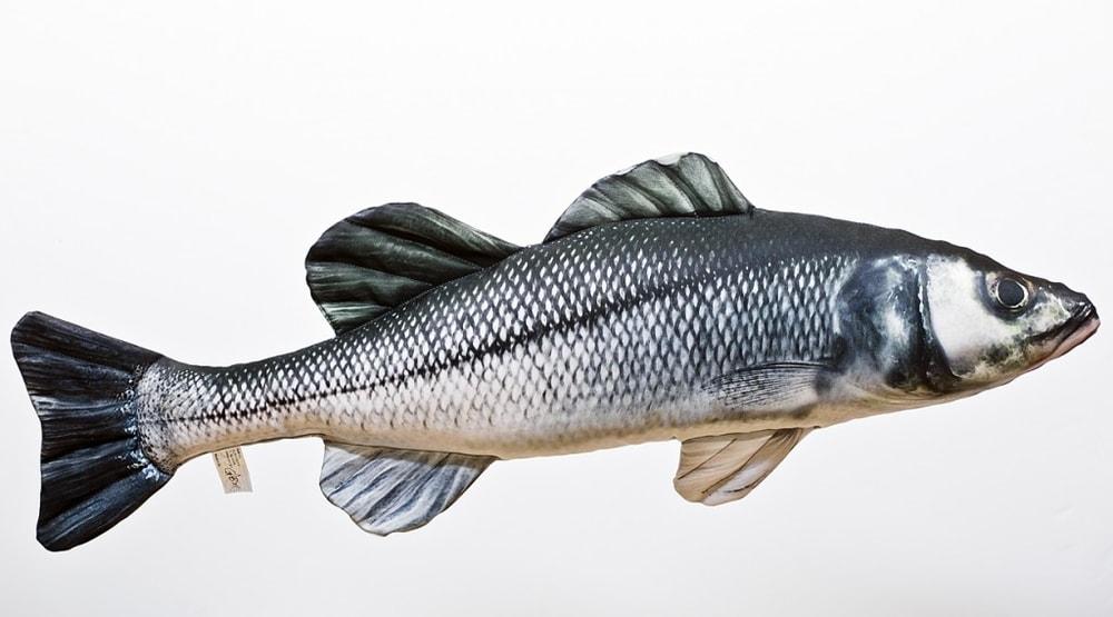 Gaby Polštář Sea Bass (Mořský vlk) - 70cm