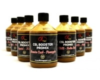 Zfish CSL Booster Promix 500ml
