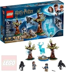 HARRY POTTER Especto patronum 75945 STAVEBNICE
