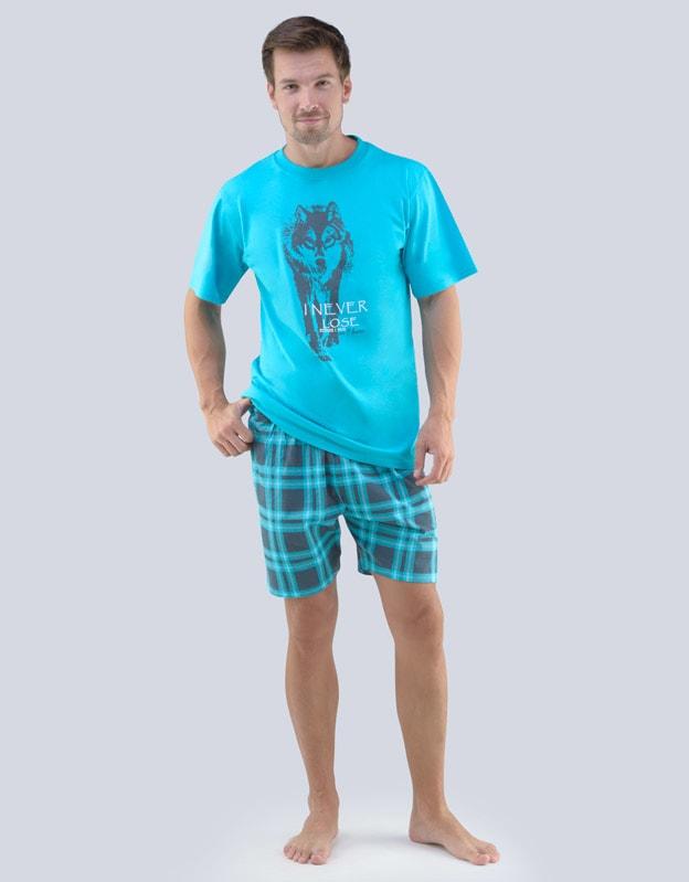 f55d1d70f46b GINA pánské pyžamo krátké pánské