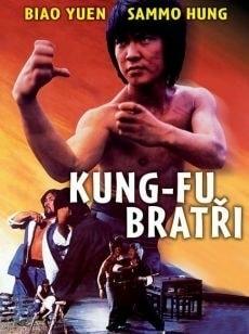 DVD Kung-fu bratři