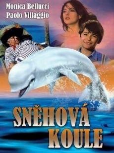 DVD Sněhová koule