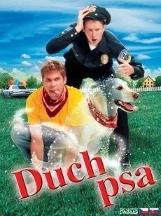 DVD Duch psa