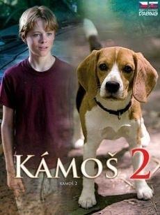 DVD Kámoš 2