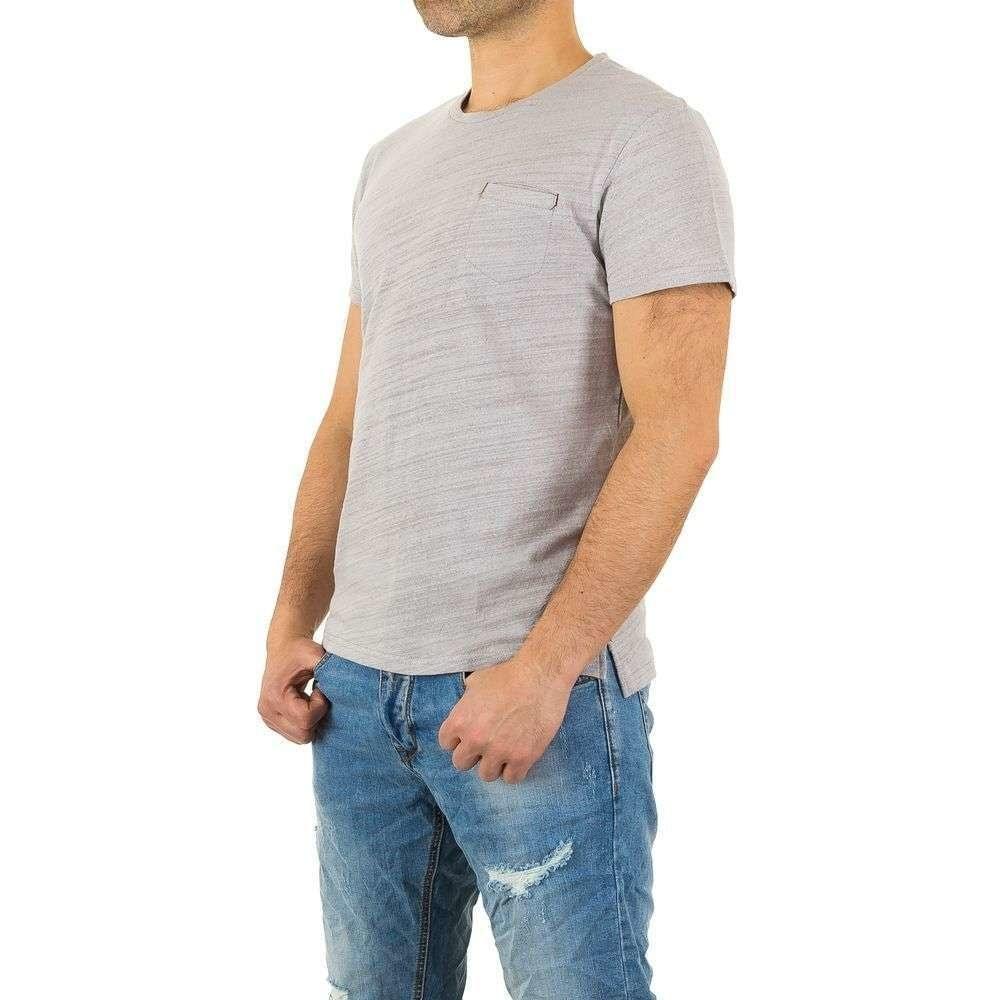 Pánská trička šedé - XL EU shp-tr1009gr