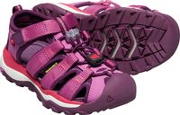 NEWPORT NEO H2 C red violet/grape wine