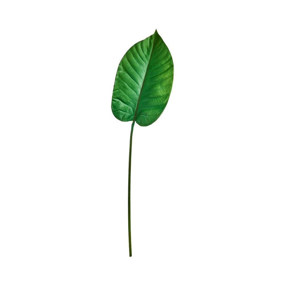 Produktové foto FLORISTA List velký 100 cm