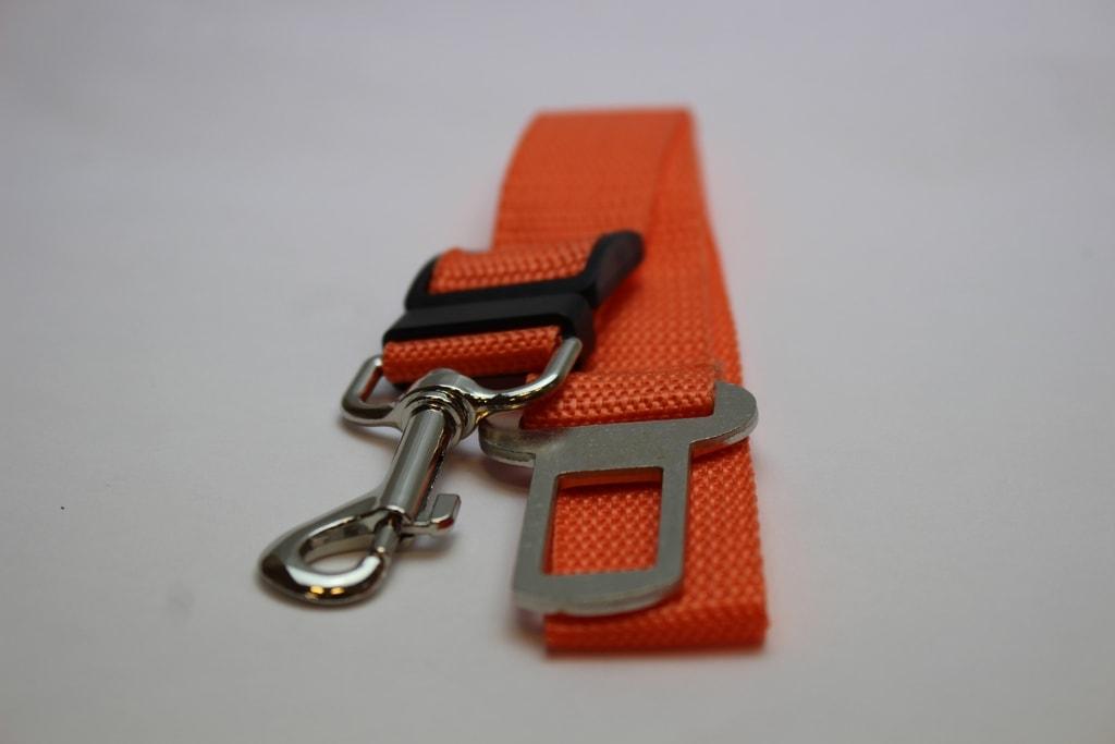 Reedog bezpečnostní pás do auta - oranžová