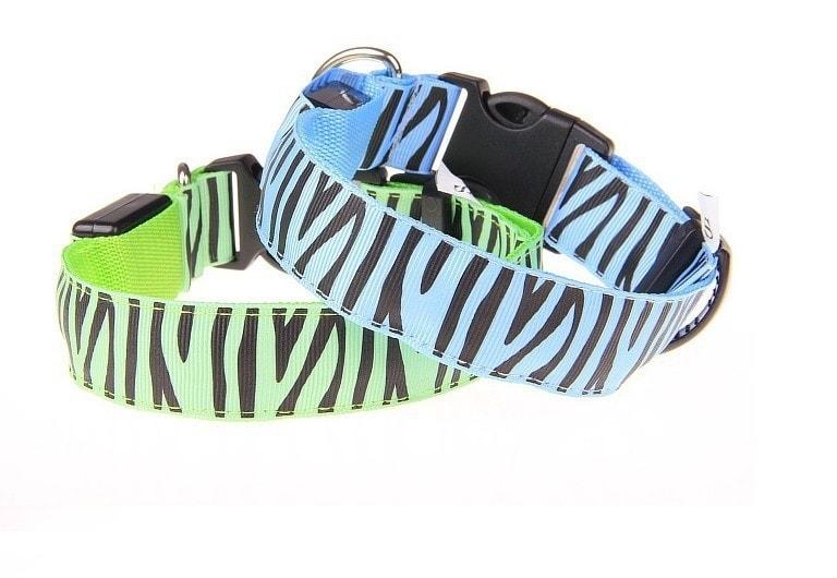 Reedog svíticí obojek pro malé, střední a velké psy zebra - zelená 42 - 60 cm