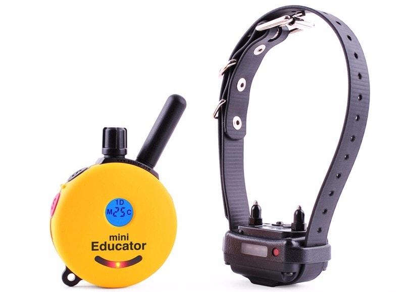 E-collar Educator ET-300 - pro 1 psa  růžová