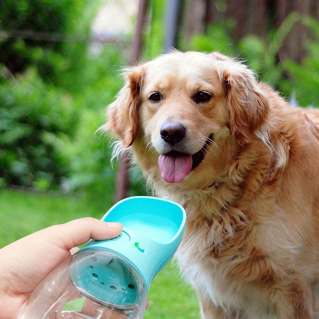 Reedog Aqua Travel cestovní láhev pro psy 350 ml - tyrkysová