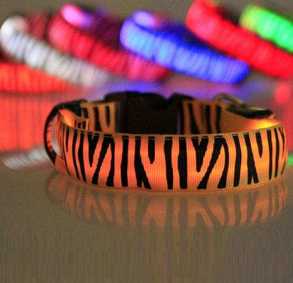 Reedog svíticí obojek pro malé, střední a velké psy zebra - červená 32 - 50 cm