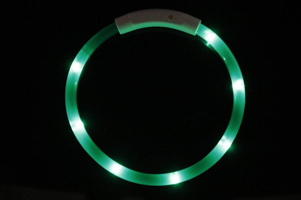 Reedog Easy Light USB dobíjecí svítící obojek pro psy a kočky - modrá