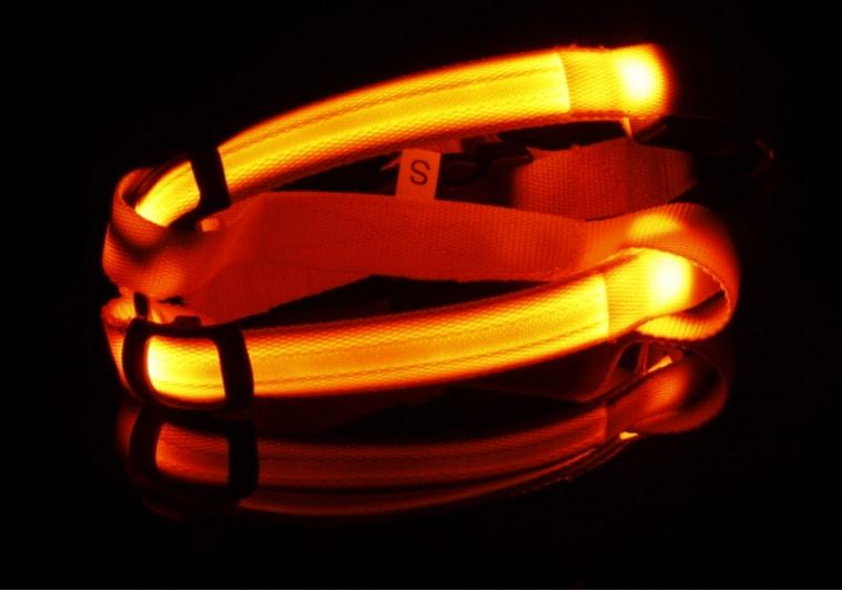 Reedog svíticí kšíry pro psy a kočky - oranžová S