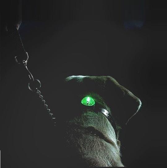 Beacon Locator SportDog svíticí přívěšek - modré
