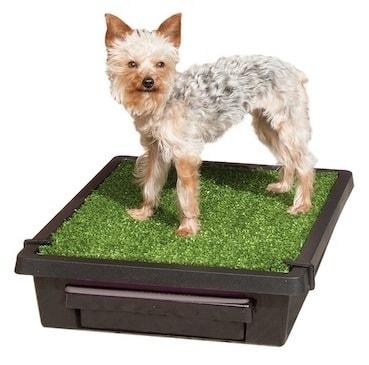 Mobilní toaleta pro psy Pet Loo - L