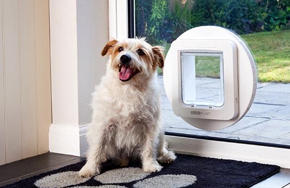 Dvířka SureFlap s mikročipem pro psy - hnědá
