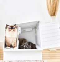 Záchod pro kočky Petkit White Villa