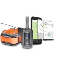Dogtra Pathfinder GPS a elektronický výcvikový obojek