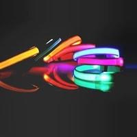 Reedog Colour svíticí obojek pro malé, střední a velké psy