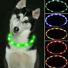 Reedog Easy Light USB rechargeable glowing collar for dogs and cats