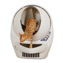 Litter-Robot III automatic self-cleaning toilet for cats
