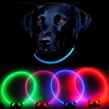 Reedog Full Light USB rechargeable glowing collar for dogs and cats