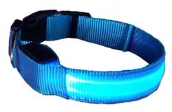 Glowing collar Reedog Colour for dogs and cats