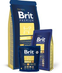 Brit Premium Junior