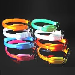 Reedog glowing collar for cats and small dogs