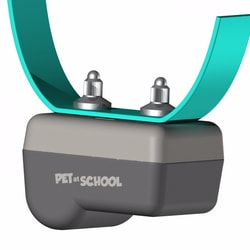 Obojok pre psov PET at SCHOOL BARK PULSE