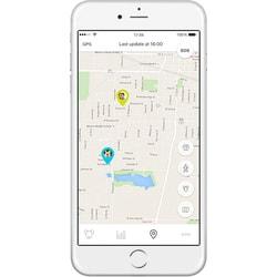 6ac779845 BAZAR - Mishiko GPS obojek a měřič aktivity - černá - GPS pro psy ...