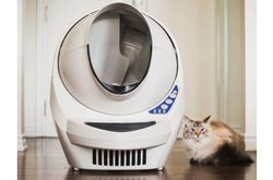 Litter Robot III - Blaue LED blinkt