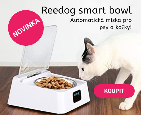 Reedog smart bowl