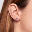 Tanzanite stud earrings in white gold