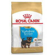 Royal Canin 1,5kg Puppy yorkshire dog