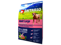 ONTARIO Adult Large Lamb & Rice & Turkey (2,25kg)